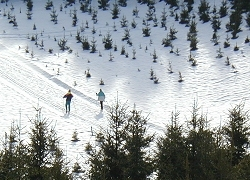 Cross-Country ski trail, St-Pierr village