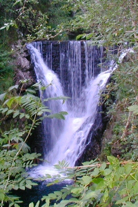 Saut de lOgnon Waterfall