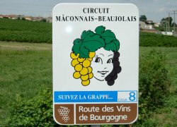 Maconnais-Beuajolais Wine Road in Burgundy wine region of France