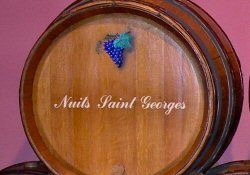 Nuits Saint Georges in Burgundy Wine Road, France