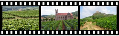 Pouilly-Fuiss vineyards photos and images
