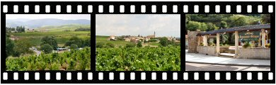 Beaujolais-Villages appellation photos and images