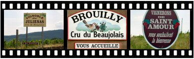 Crus Beaujolais vineyard photos and images