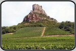 Macon wine and vineyard images, Beaujolais vineyards and wine photos