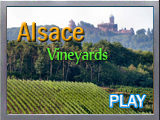 Alsace wine tour video