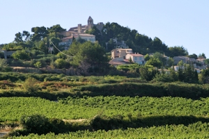 Rasteau, Côtes du Rhône village wine and food pairing tips